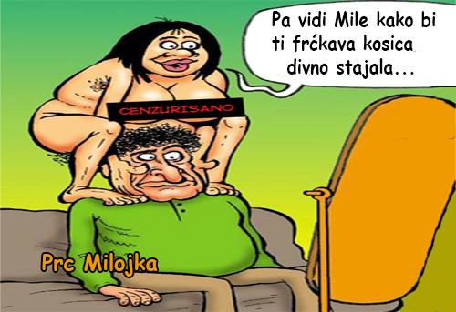 Pa vidi Mile kako bi tin divno stajala @ crtane slike - humor u stripu