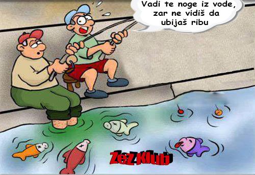 Vadi te noge iz vode @ crtane slike - humor u stripu