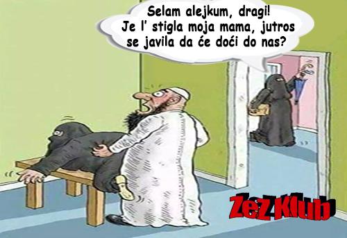 Selam alejkum, dragi! Je l stigla @ crtane slike - humor u stripu