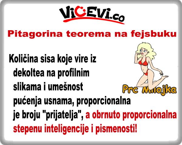 Pitagorina teorema na fejsbuku @ vicevi