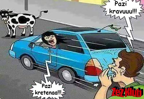 Pazi kravu @ crtane slike - humor u stripu