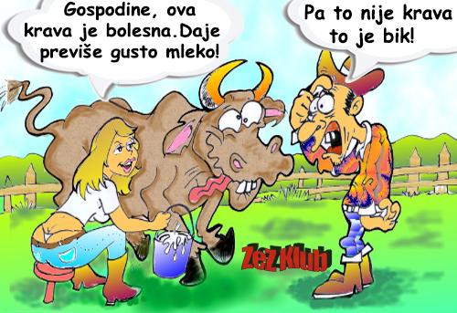 Gospodine ova krava je bolesna @ crtane slike - humor u stripu