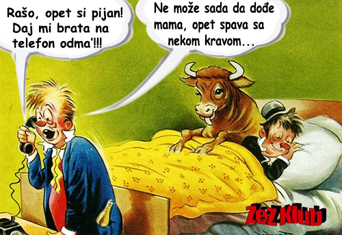Rašo, opet si pijan @ crtane slike - humor u stripu